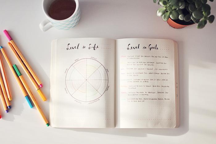 Level 10 life sur Bullet journal résolutions